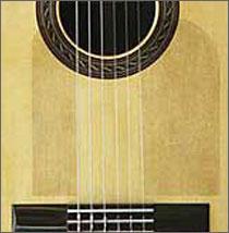 Guitar Armor